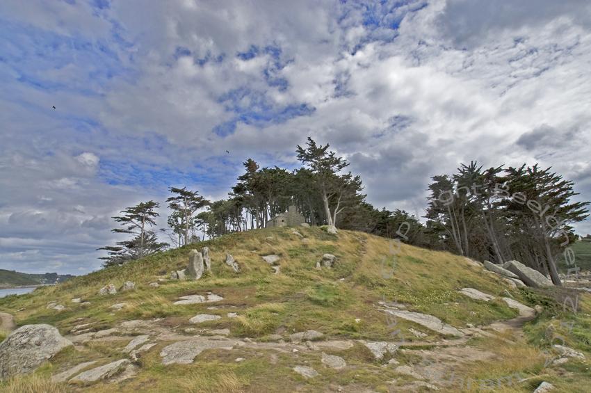 Kuifje-eiland